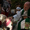 Blessing of the Animals :